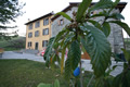 bed and breakfast colli bologna